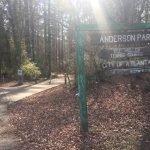 Anderson Park (2017)